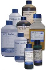 Bis-Acrylamide 2%