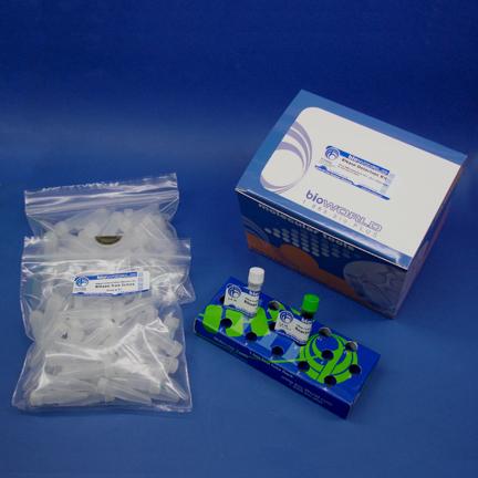 RNase Detection Kit [1 Kit]