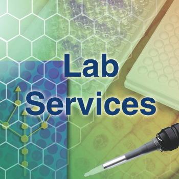 DNA Plasmid Services