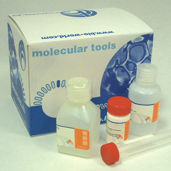 Blood PCR Kit