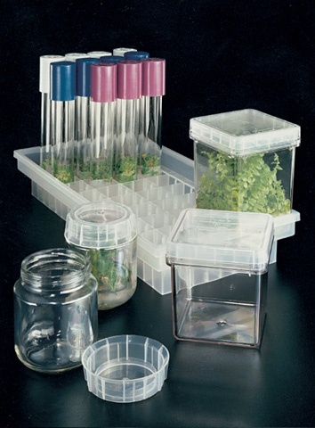 Magenta� Plant Culture 7-Way Tray [1 CS]