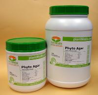Agar, Plant Tissue Culture