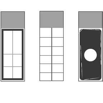 Microbiology slide-2X6 Square Grid