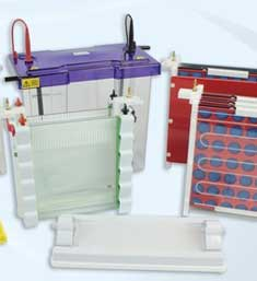Electrophoresis Of Dyes (Educational) Kit