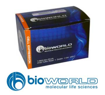 Citrate Carbonate Buffer 1M, pH 10.0